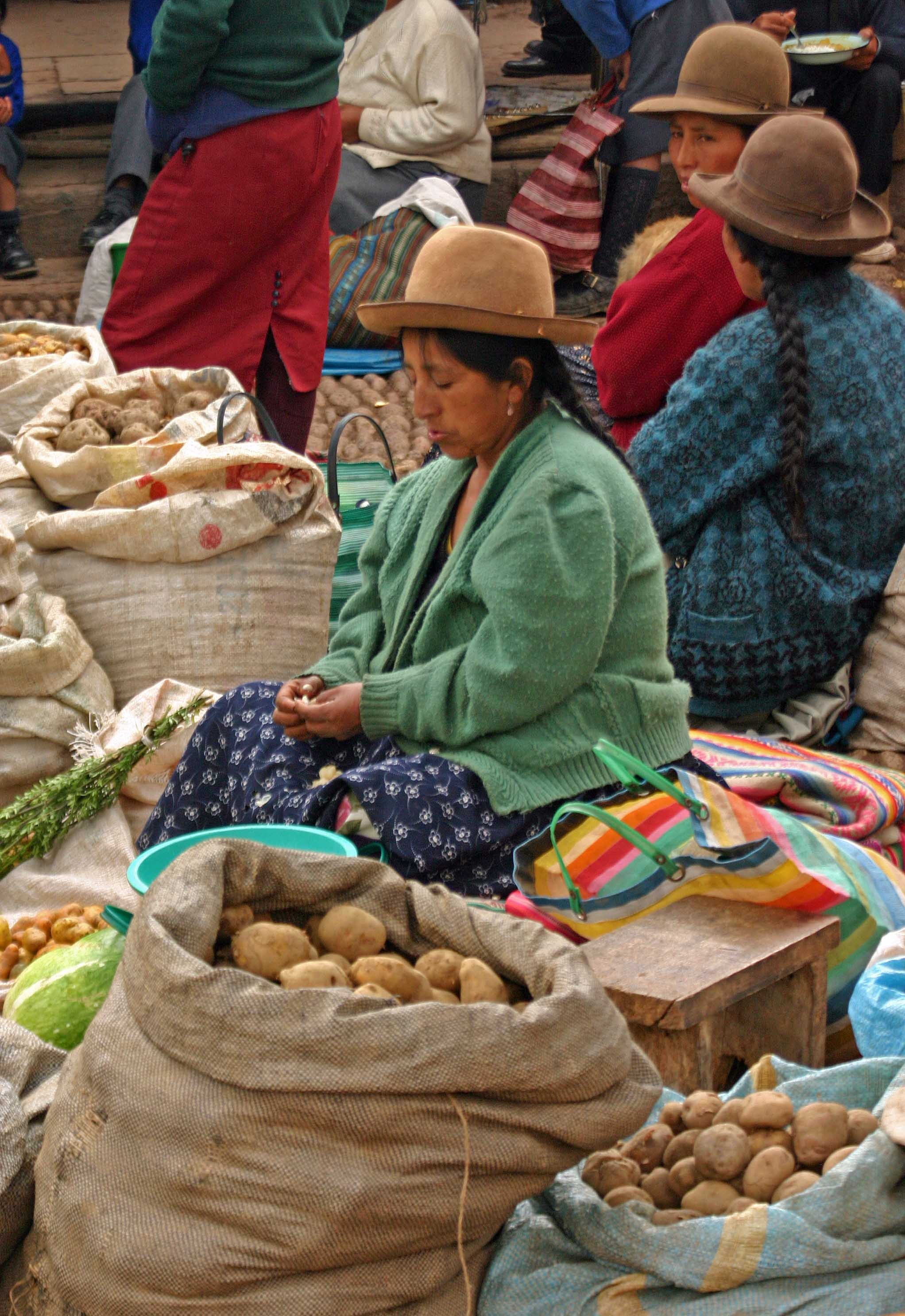 the columbian exchange and potatoes The potato became the most important food source for the poor in central and   the columbian exchange was global, introducing new foods to.